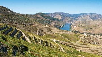 Porto and the Douro Valley with Bill Knott