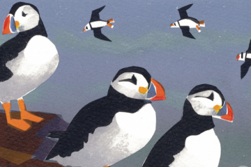 The puffins of Skomer - Harry Mount