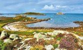 Treasure islands - Tanya Gold