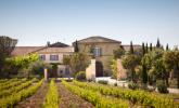 Wine: Grape v Terroir