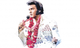 I Once Met Elvis by Rod Gilchrist