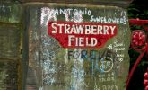 The real story of Strawberry Fields