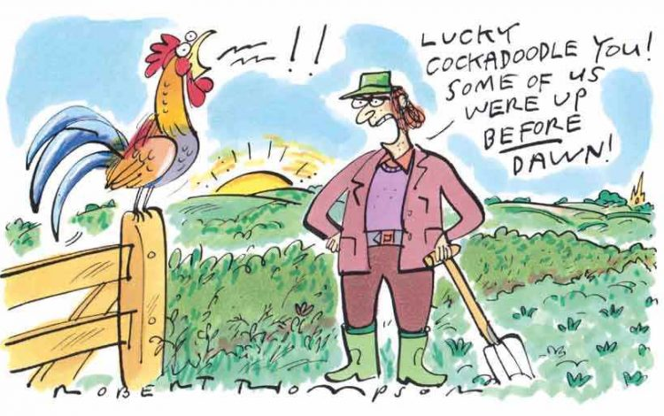 I'm far too lazy for country life - Dominic West