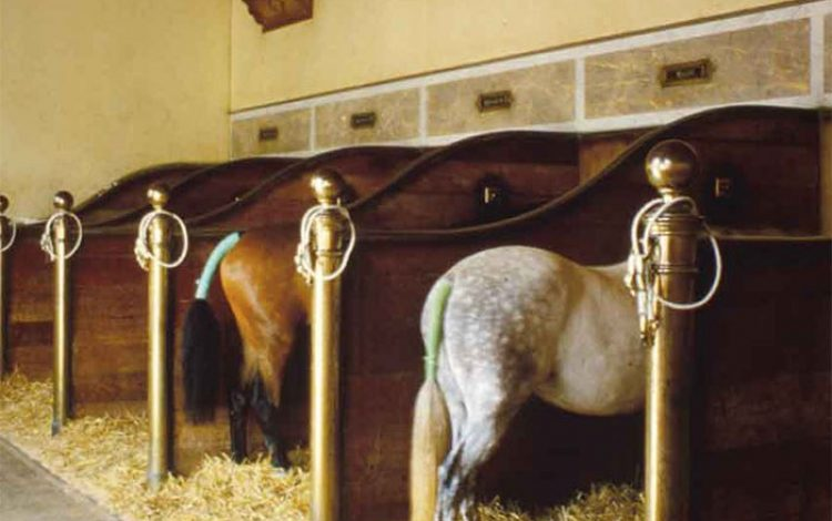 Stables fit for the King of the Turf - Lucinda Lambton