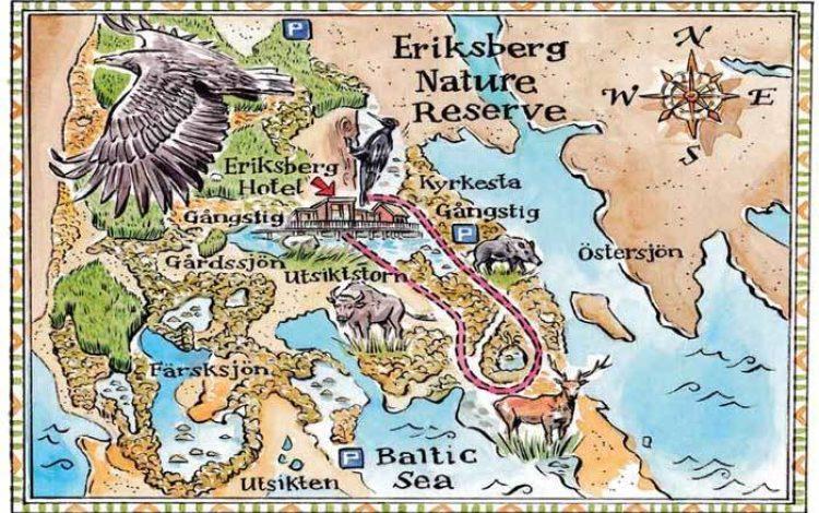 Eriksberg – the spectacular Swedish wild side