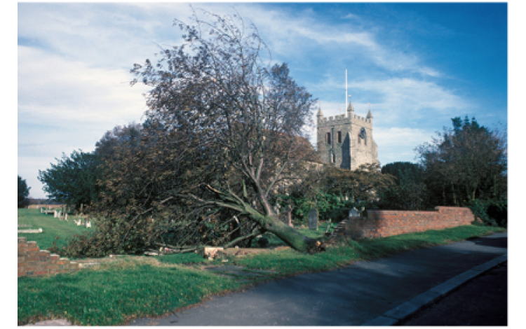 When the wind really did blow – Thomas Pakenham remembers the 1987 storm